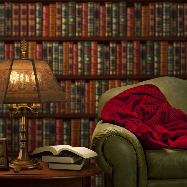 Cozy couch lamp books